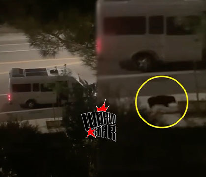 LOOK AT THIS: Scary-Ish: Woman Screams For Help While Being Kidnapped And Forced Into Van Near LA As Couple Stand Around Recording Altercation!
